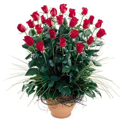 Bitlis uluslararası çiçek gönderme  10 adet kirmizi gül cam yada mika vazo
