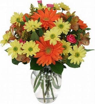 Bitlis hediye sevgilime hediye çiçek  vazo içerisinde karışık mevsim çiçekleri