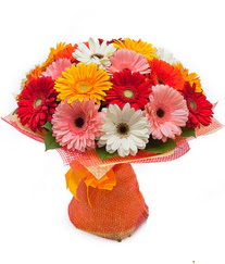 Renkli gerbera buketi  Bitlis anneler günü çiçek yolla