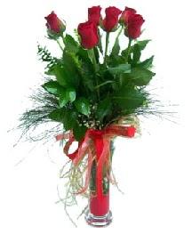 vazo içerisinde 5 kırmızı gül  Bitlis güvenli kaliteli hızlı çiçek