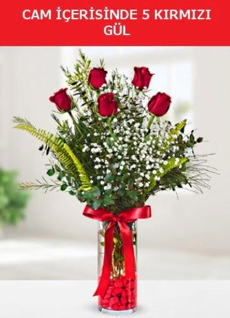 Cam içerisinde 5 adet kırmızı gül  Bitlis çiçek siparişi sitesi