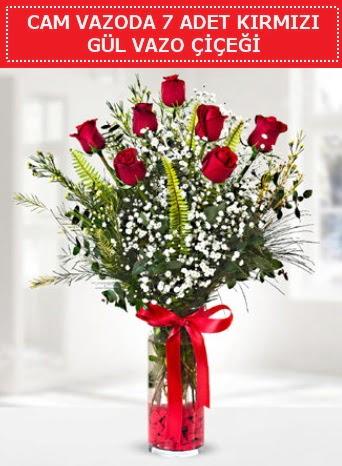 Cam vazoda 7 adet kırmızı gül çiçeği  Bitlis çiçek gönderme sitemiz güvenlidir