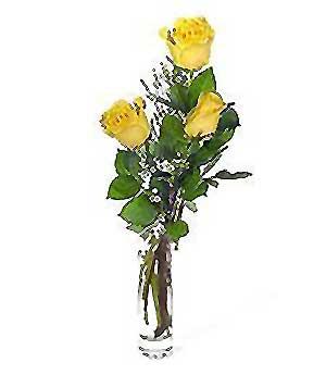 Bitlis internetten çiçek siparişi  3 adet kalite cam yada mika vazo gül