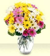 Bitlis internetten çiçek siparişi  mevsim çiçekleri mika yada cam vazo