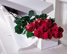 Bitlis çiçek satışı  özel kutuda 12 adet gül