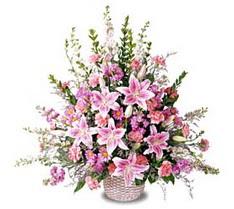 Bitlis çiçek siparişi sitesi  Tanzim mevsim çiçeklerinden çiçek modeli