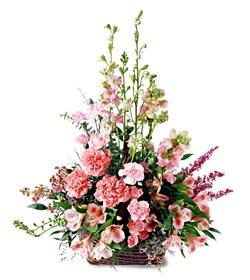 Bitlis ucuz çiçek gönder  mevsim çiçeklerinden özel