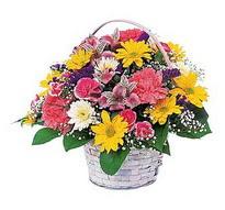 Bitlis çiçek , çiçekçi , çiçekçilik  mevsim çiçekleri sepeti özel