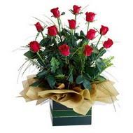 Bitlis internetten çiçek satışı  10 adet kirmizi gül özel mika yada cam vazoda