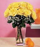 Bitlis internetten çiçek satışı  9 adet sari güllerden cam yada mika vazo