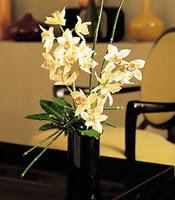 Bitlis çiçekçiler  cam yada mika vazo içerisinde dal orkide