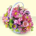 Bitlis yurtiçi ve yurtdışı çiçek siparişi  bir sepet dolusu kir çiçegi  Bitlis çiçek gönderme sitemiz güvenlidir