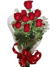 9 adet kaliteli kirmizi gül   Bitlis online çiçekçi , çiçek siparişi