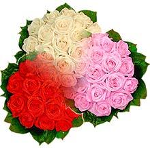 3 renkte gül seven sever   Bitlis çiçek , çiçekçi , çiçekçilik