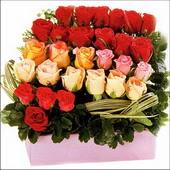 15 adet renkli gül ve cam   Bitlis çiçekçi mağazası