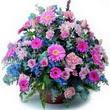 karisik mevsim kir çiçekleri  Bitlis çiçek gönderme sitemiz güvenlidir