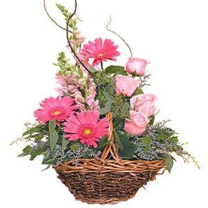 küçük ama görsel aranjman   Bitlis çiçek gönderme sitemiz güvenlidir