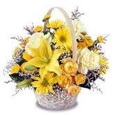 sadece sari çiçek sepeti   Bitlis çiçek gönderme sitemiz güvenlidir