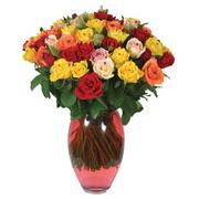 51 adet gül ve kaliteli vazo   Bitlis çiçek gönderme sitemiz güvenlidir