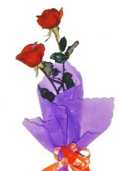 2  adet kirmizi gül buketi   Bitlis çiçek , çiçekçi , çiçekçilik
