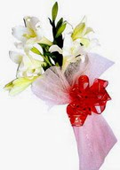 Bitlis çiçek , çiçekçi , çiçekçilik  ince vazoda gerbera ve ayi