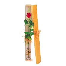 ince  kutuda  1  gül   Bitlis çiçek yolla