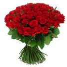 101 adet kirmizi gül sade  Bitlis çiçek yolla