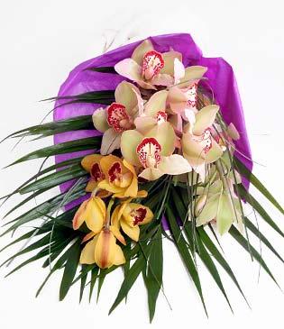 Bitlis cicekciler , cicek siparisi  1 adet dal orkide buket halinde sunulmakta