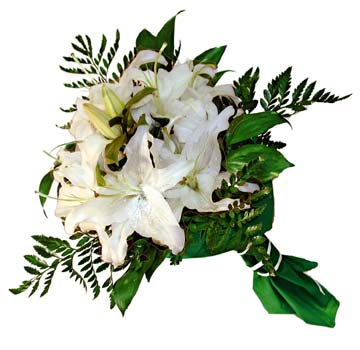 3 adet kazablanka demeti buketi  Bitlis çiçekçi mağazası
