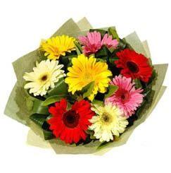 9 adet karisik gerbera demeti  Bitlis çiçek mağazası , çiçekçi adresleri