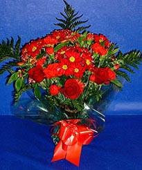 Bitlis hediye çiçek yolla  3 adet kirmizi gül ve kir çiçekleri buketi