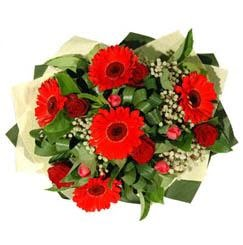 Bitlis ucuz çiçek gönder   5 adet kirmizi gül 5 adet gerbera demeti