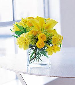 Bitlis ucuz çiçek gönder  sarinin sihri cam içinde görsel sade çiçekler