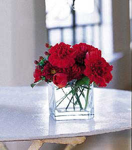 Bitlis ucuz çiçek gönder  kirmizinin sihri cam içinde görsel sade çiçekler