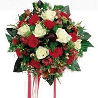 Bitlis ucuz çiçek gönder  6 adet kirmizi 6 adet beyaz ve kir çiçekleri buket