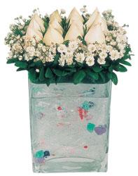 Bitlis çiçekçi mağazası  7 adet beyaz gül cam yada mika vazo tanzim