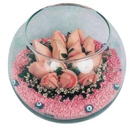Bitlis internetten çiçek satışı  cam fanus içerisinde 10 adet gül