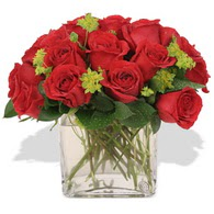 Bitlis çiçekçi telefonları  10 adet kirmizi gül ve cam yada mika vazo