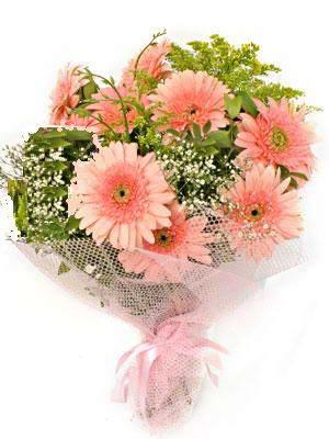 Bitlis çiçek satışı  11 adet gerbera çiçegi buketi