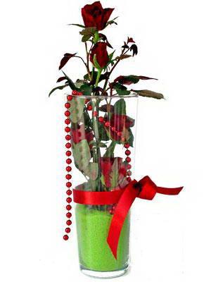 Bitlis online çiçek gönderme sipariş  Cam yada mika içerisinde 9 adet kirmizi gül - sevdiklerinize özel