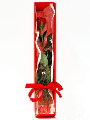 Bitlis yurtiçi ve yurtdışı çiçek siparişi  1 adet kutuda gül