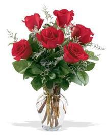 Bitlis çiçek gönderme sitemiz güvenlidir  7 adet kirmizi gül cam yada mika vazoda sevenlere