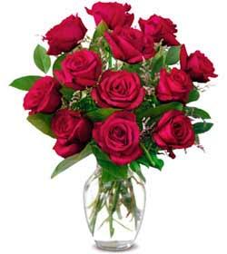 Bitlis online çiçek gönderme sipariş  1 düzine kirmizi gül sevenlere özel vazo gülleri