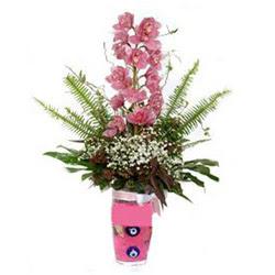 Bitlis hediye çiçek yolla  cam yada mika vazo içerisinde tek dal orkide çiçegi