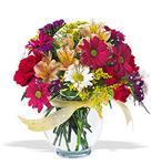 Bitlis çiçek , çiçekçi , çiçekçilik  cam yada mika vazo içerisinde karisik kir çiçekleri