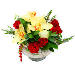Bitlis çiçek gönderme  1 adet orkide 5 adet gül cam yada mikada