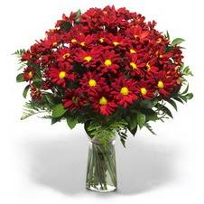 Bitlis çiçek yolla  Kir çiçekleri cam yada mika vazo içinde