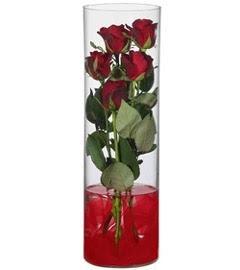 cam içerisinde 7 adet kirmizi gül  Bitlis çiçekçiler