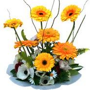 camda gerbera ve mis kokulu kir çiçekleri  Bitlis çiçekçi telefonları