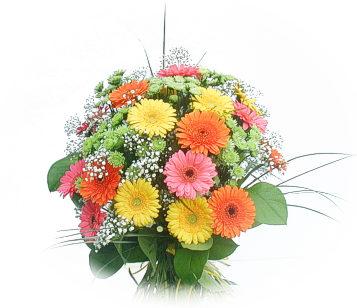 13 adet gerbera çiçegi buketi  Bitlis online çiçek gönderme sipariş